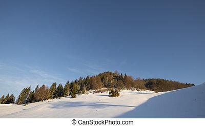 paisagem inverno