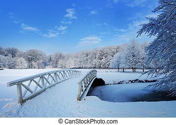 paisagem inverno, em, a, países baixos