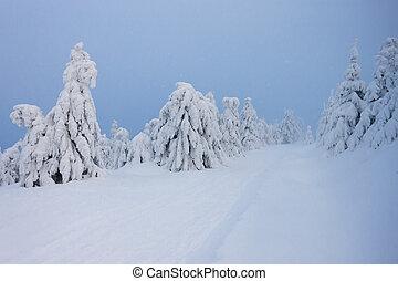 paisagem, inverno, orlicke, república tcheca, montanhas