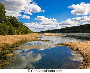 paisagem, ligado, um, largo, rio, terminando, com, pântanos, com, arenoso, baixios, e, costas, coberto, com, florestas