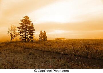 paisagem, manhã