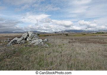 paisagem natureza, de, campo, com, rocha
