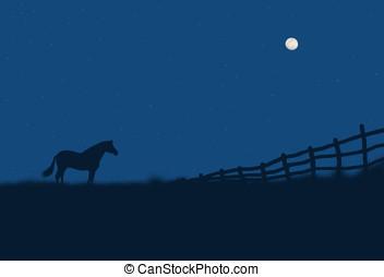 paisagem, noturna