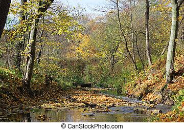 paisagem outono