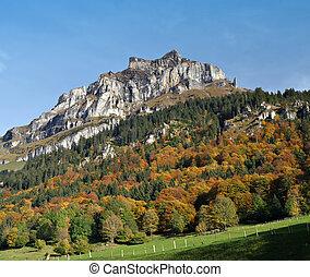 paisagem outono, outono