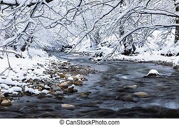 paisagem, rio, árvores inverno, gelado