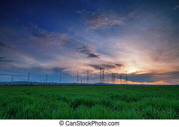 paisagem rural, com, trigal, ligado, pôr do sol