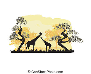 paisagem, selva, silueta, dois, girafas