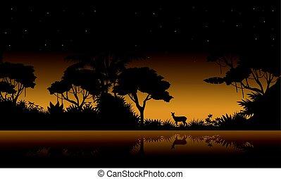 paisagem, silueta, selva, cobrança, estoque