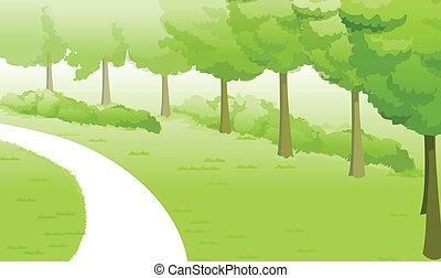 paisagem verde, e, caminho