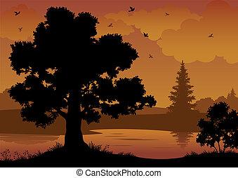 paisaje, árboles, río, y, aves