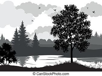 paisaje, árboles, río, y, aves, silueta