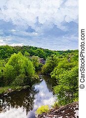 paisaje, bosque verde, y, río