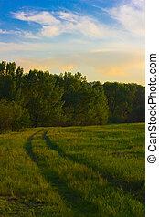 paisaje, camino, naturaleza