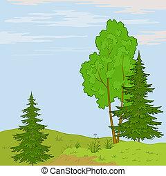 paisaje., colina, árboles