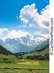paisaje, con, alpes, en, austria