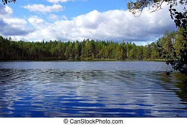 paisaje, con, lago