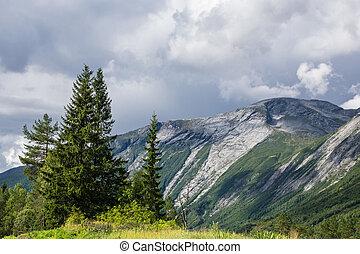 paisaje, con, montañas, y, árboles, en, noruega