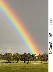 paisaje, con, un, hermoso, arco irirs