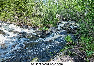 paisaje, con, un, río, en, el, bosque