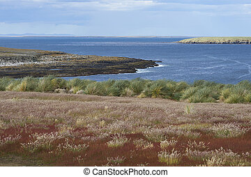 paisaje, de, bleaker, isla