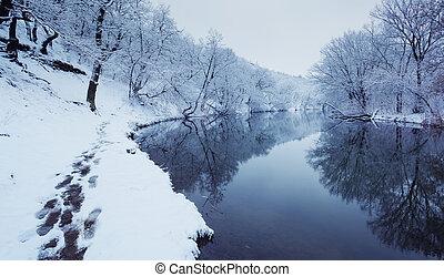 paisaje de invierno, con, río, en, bosque