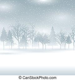 paisaje de invierno, nevoso