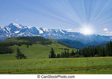 paisaje de la naturaleza, pradera, y, montañas, fauna, de,...