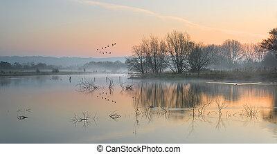 paisaje, de, lago, en, niebla, con, sol, brillo, en, salida del sol