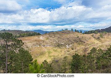 paisaje de montaña, en, central, honduras, cerca, aldea, de, sta., cruz, ariba