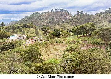 paisaje de montaña, en, remoto, áreas, de, honduras
