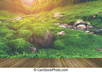 paisaje, de, mundo natural, herencia, sitio, khao, yai,...