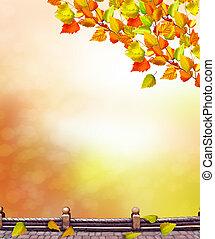 paisaje de otoño, con, brillante, colorido, foliage., indio, summer.