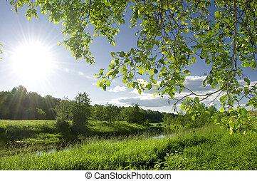 paisaje de río, verano