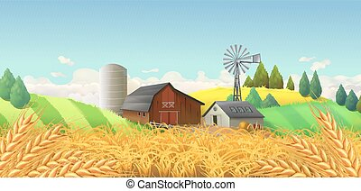 paisaje., granja de trigo, vector, field., plano de fondo