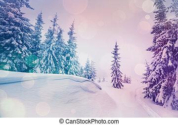 paisaje, majestuoso, invierno