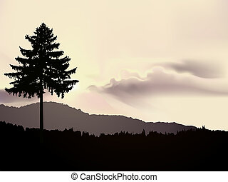 paisaje, norteamericano, norte