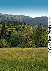 paisaje rural, en, gorce, montañas, polonia