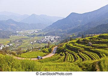 paisaje rural, en, wuyuan, jiangxi, provincia, china.