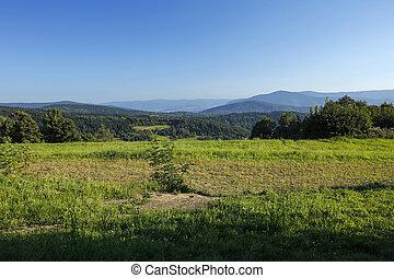 paisaje rural, montaña