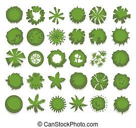paisaje, vector, diseño, vista, aislado, árboles, cima, conjunto, diferente, arbustos, hedges., projects., ilustración, verde, white.