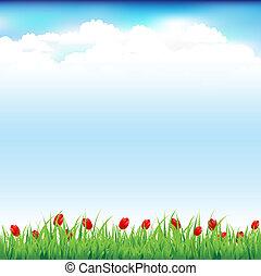 paisaje verde, con, pasto o césped, y, tulipán rojo