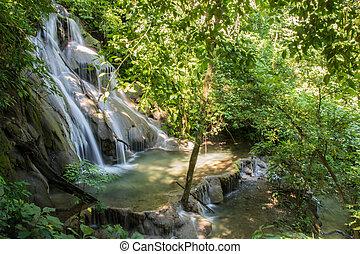 paisible, chute eau, dans, les, mexicain, jungle