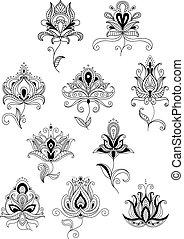 paisley, elementos, esboço, desenho, étnico, floral