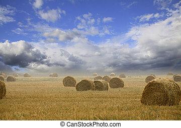 paja, balas, en, tierras labrantío, con, cielo nublado