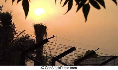 pakistan, draad, op, india, weerhaak, ondergaande zon ,...