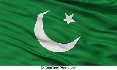 Pakistan Muslim League Flag Closeup Seamless Loop - The...