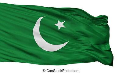 Pakistan Muslim League Flag Isolated Seamless Loop - The...