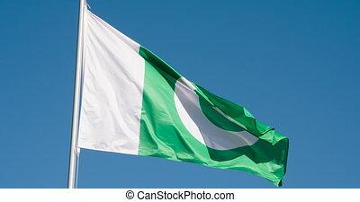 pakistan, staatsvlag