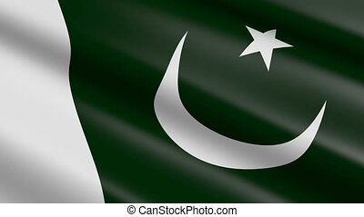 pakistan vlag, (seamless, loop)